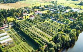 Hattula, Lepaa - viinitila, winery.