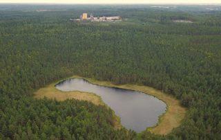 Hausjärvi, metsä, forest.
