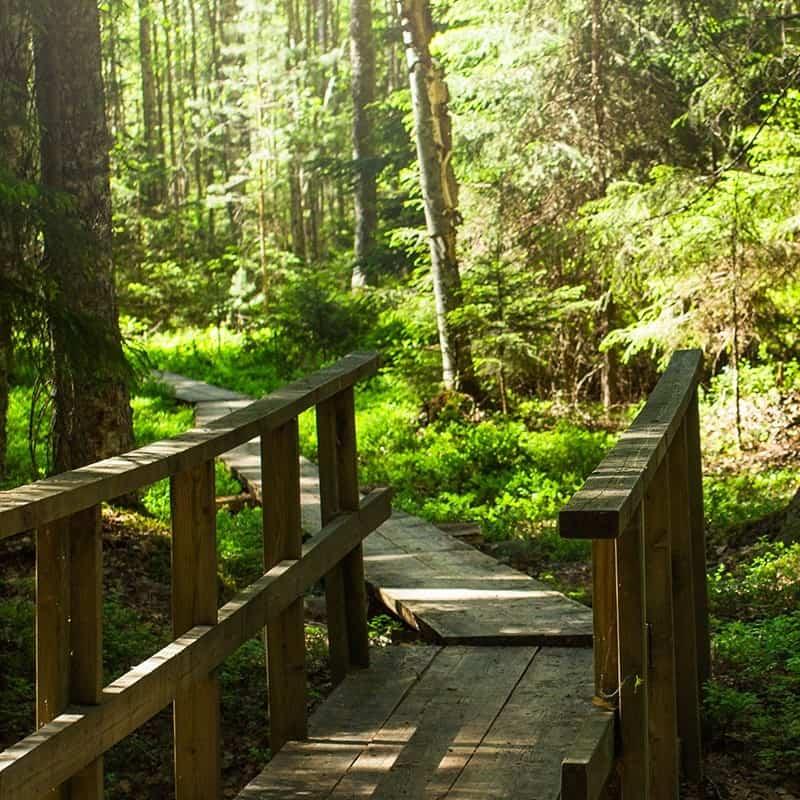 Visit Häme - Luonto, Nature