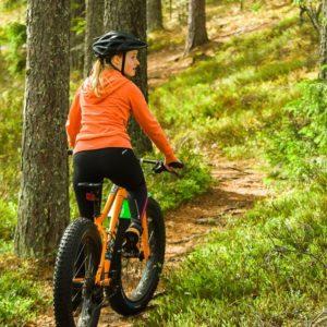 Visit Häme - Discover activities