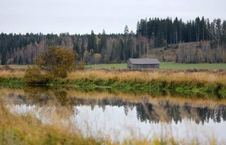 Ypäjä, maalaismaisema, countryside.