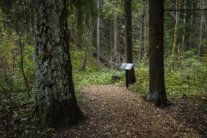 Sibeliuksen_metsä_sibelius_forest_polku_bath_and_a_sign