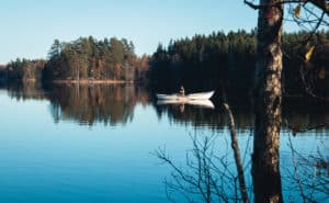 Liesjärvi_national_park_lake