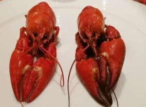 ravut_crayfish_crabs