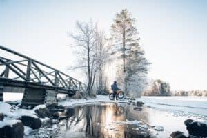 TOP10_Forssa_Liesjärven_kansallispuisto_talvi_kyynäränharjun_silta
