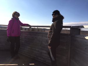 Kävelypalaveri_Torronsuon_kansallispuisto_lintutorni