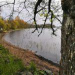 Local_tips_forssanseutu_manttaalin_uimaranta