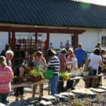 local_tips_forssan_seutu_wendlan_puutarha