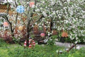 Hyttikortteli_asuinalue_puutarha_riippukeinu_omenapuussa