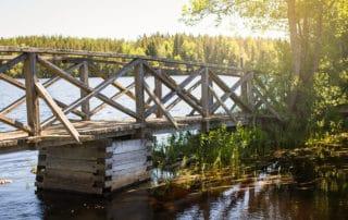 Tammela_liesjärven_kansallispuisto