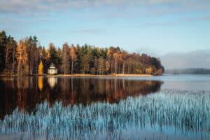 Tammela_saaren_kansanpuisto