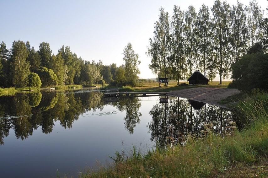 Oitin-uimala_puujoki