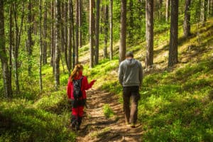 Opastus_metsa_luontooppaat