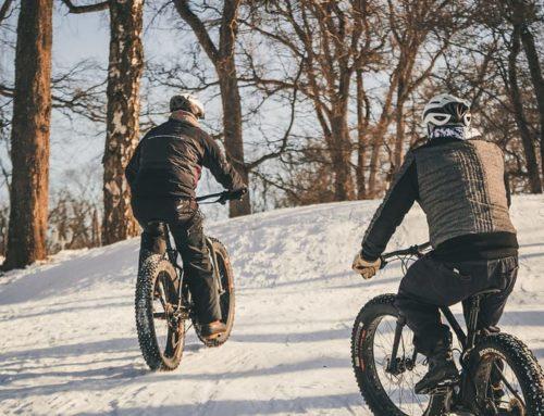 Aulangon lumiset metsät kutsuvat liikkumaan