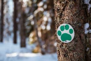 Visit_Hame_Evo_luontopolun_merkki_vastuullisuus_Sustainable_travel_Finland_VisitFinland