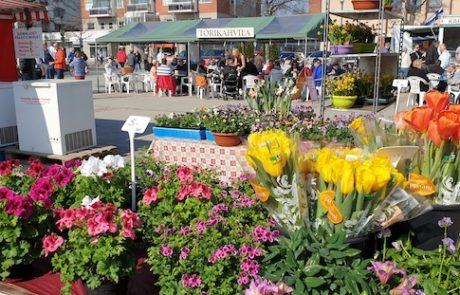Forssa Market flowers