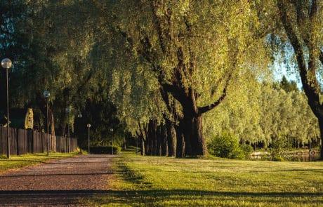 Hameenlinnan-kansallinen-kaupunkipuisto-rantareitti
