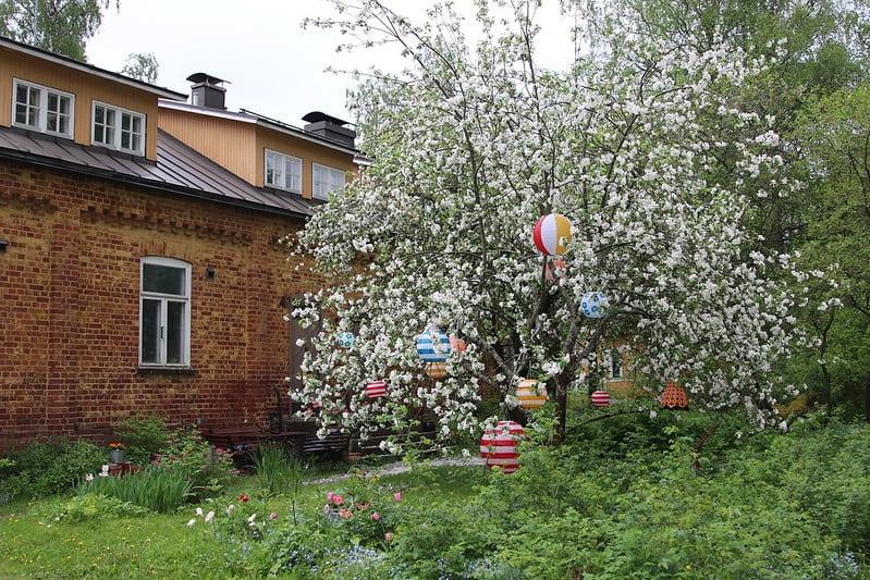 Hyttikortteli puutarha