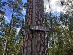 Tuhansien-tarinoiden-Hame-Jallen-manty-Hausjarvi