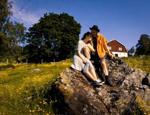 Maaseutumatkailijan parhaat vinkit Hämeenlinnan seudulle