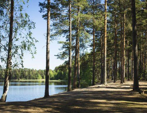 Eerikkilälle Sustainable Travel Finland -merkki