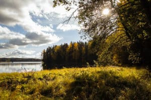 Maailman_siivouspäivä_syksyinen_luonto